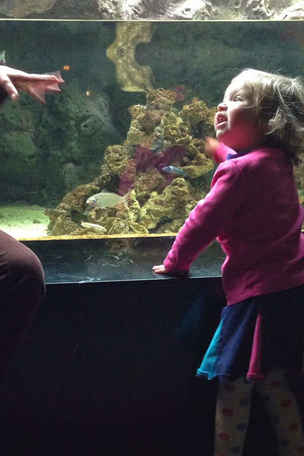 Mommy Mondays Aquarium with a Toddler