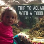Mommy Mondays: Aquarium with a Toddler