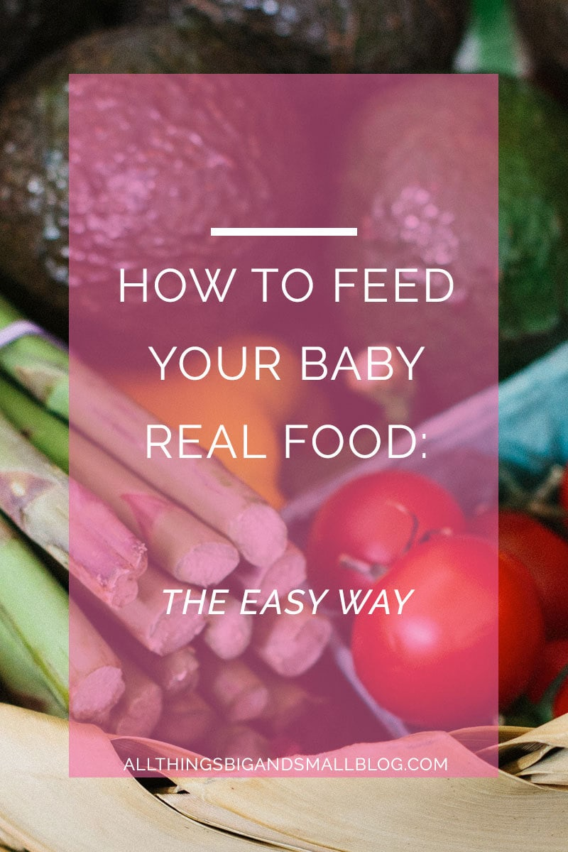 how to feed your baby real food