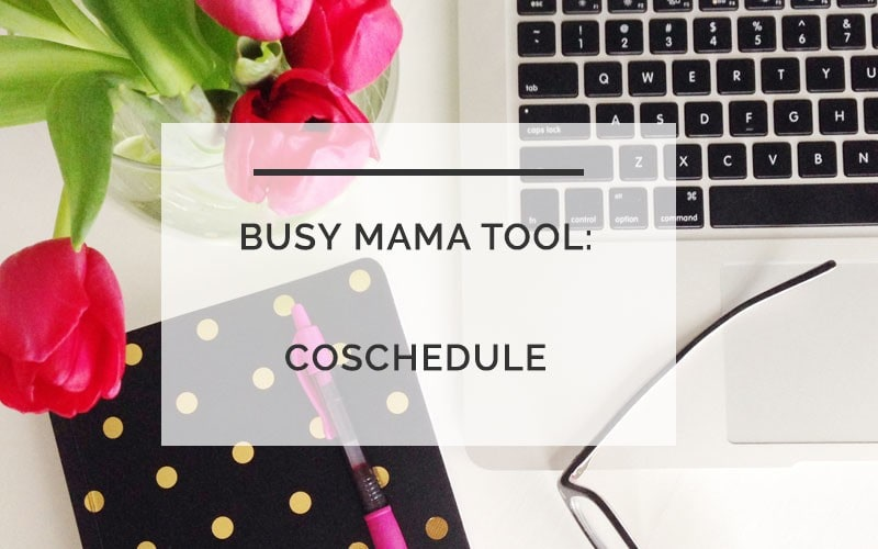 For Busy Bloggers How to Stay Organized with Coschedule