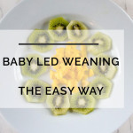 Real Baby Led Weaning: The Busy Mom's Guide