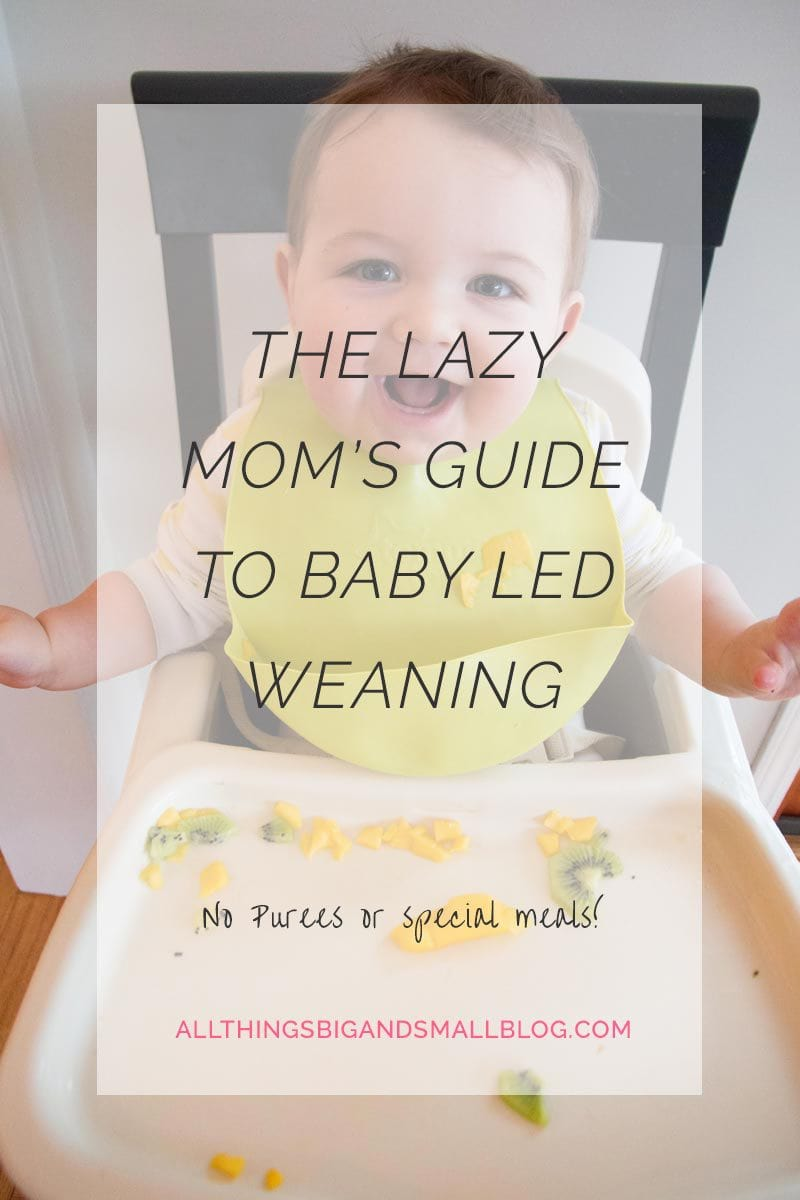 baby-led-weaning-easy-way