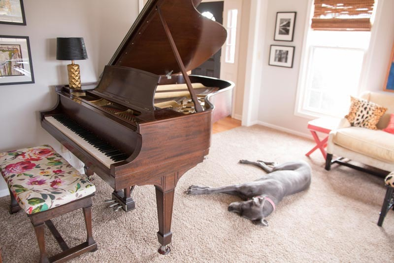 steinway baby grand piano in light gray living room with great dane sleeping on the floor