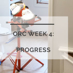 ORC: Week 4 Progress