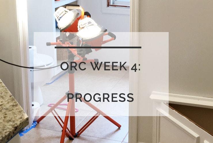 ORC: Week 4 Progress