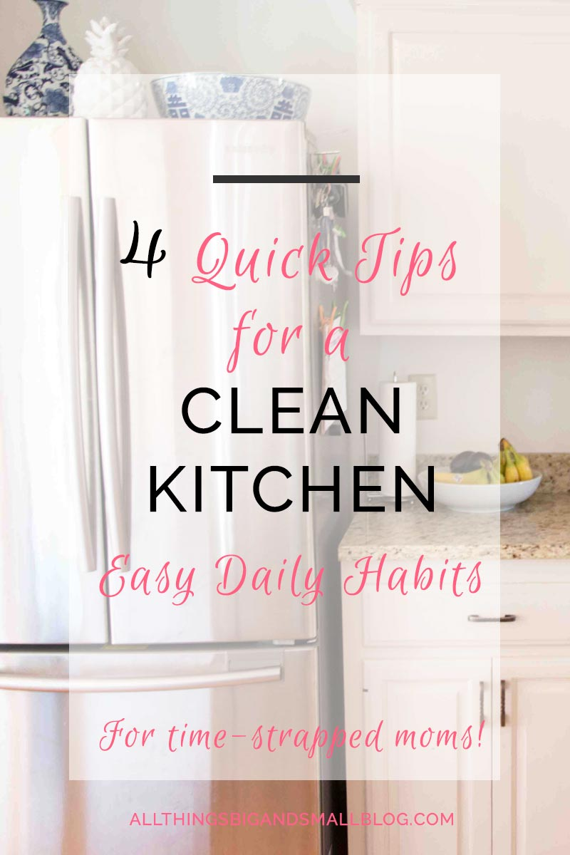 How to Have a Clean Kitchen- 4 Daily Habits that will keep your kitchen looking clean EVEN with kids under three!