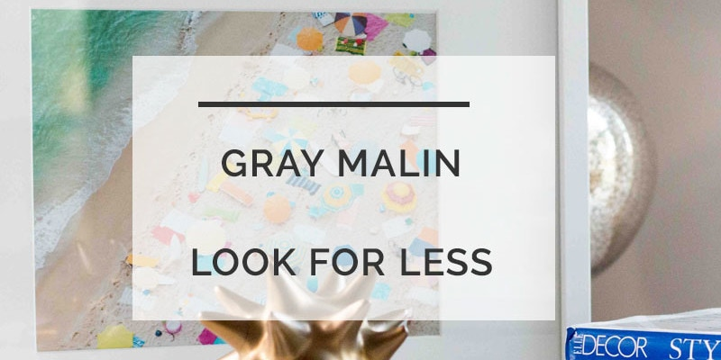 gray malin look for less