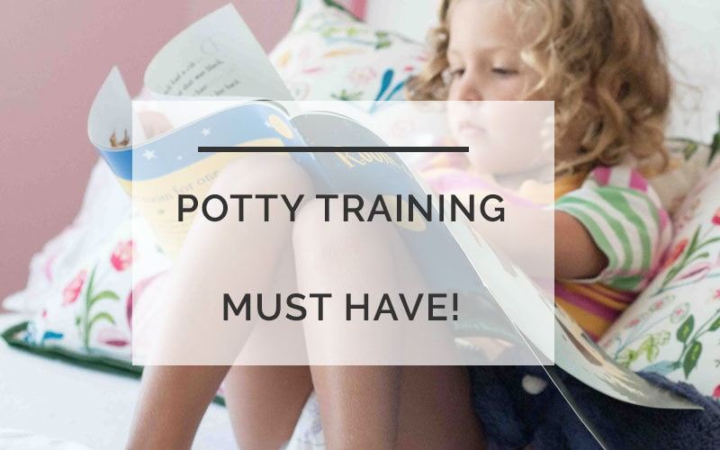 Potty Training Your Toddler: How We are Making it a Positive Experience
