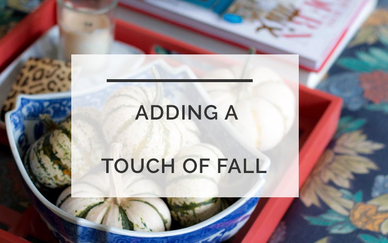 Fall decor accents that are budget-friendly and beautifyl ALL THINGS BIG AND SMALL