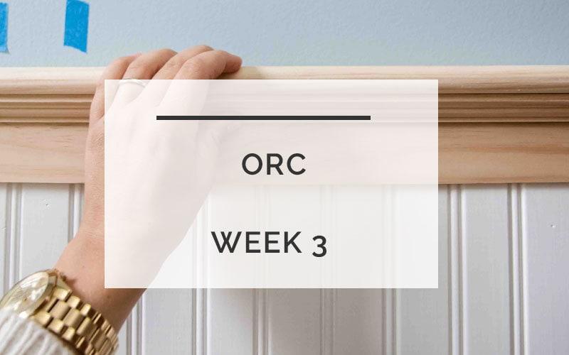 ORC: Powder Room Bead Board Progress