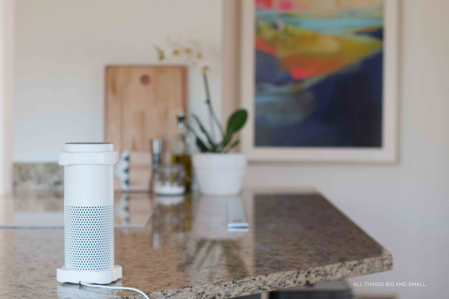 Love these mom hacks for Amazon ECHO