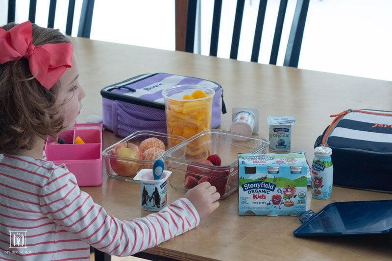 tips for packing a healthy toddler lunch box from mom blogger DIY Decor Mom