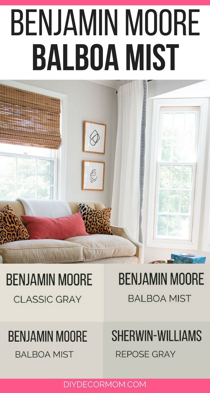 Benjamin Moore Balboa Mist: See BM Balboa Mist on interior walls of living room, dining room,