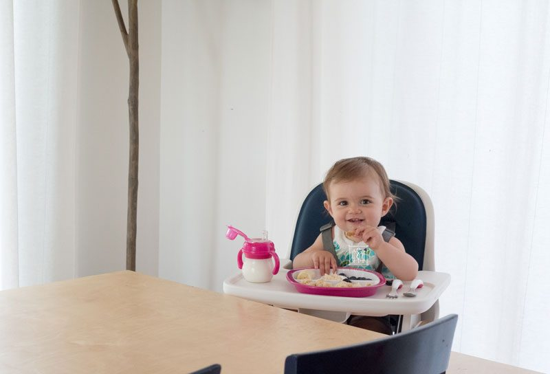 baby sitting in high chair baby led weaning