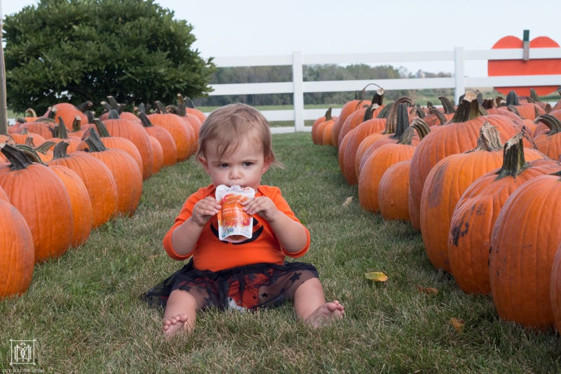 fall bucket list for families and babies