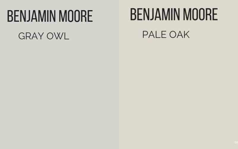 BM Gray Owl vs. Pale Oak