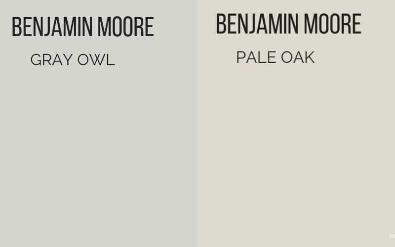 BM Gray Owl vs. Pale Oak