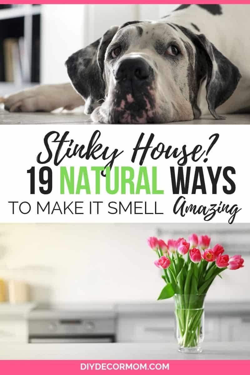 how to make your house smell amazing- 19 natural ways to get rid of stinky house