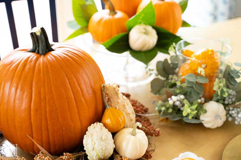 pumpkin and gourds on table