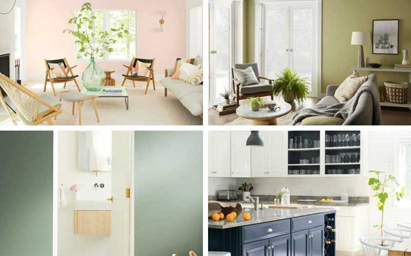 2020 colors of the year and paint trends